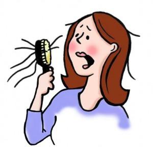 hair loss family tree